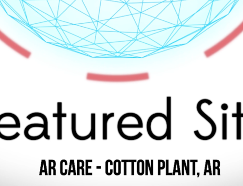 Featured Site – Cotton Plant